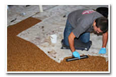 Nature Stone Installer Laying Floor